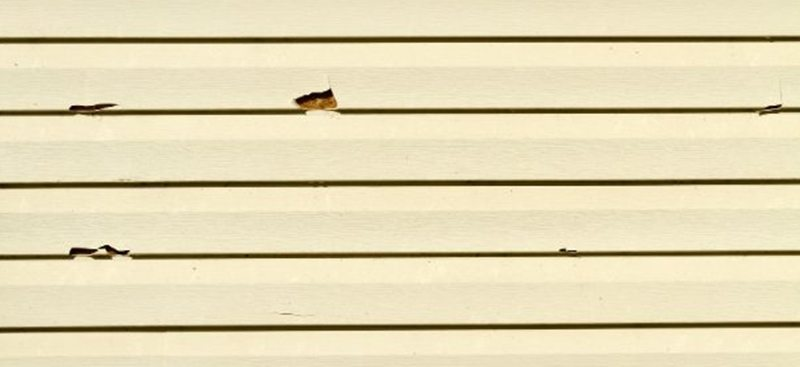 Repair Or Replace: What To Do With Damaged Siding